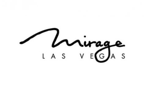Tradeshow Photographer Success Story From Mirage Las Vegas